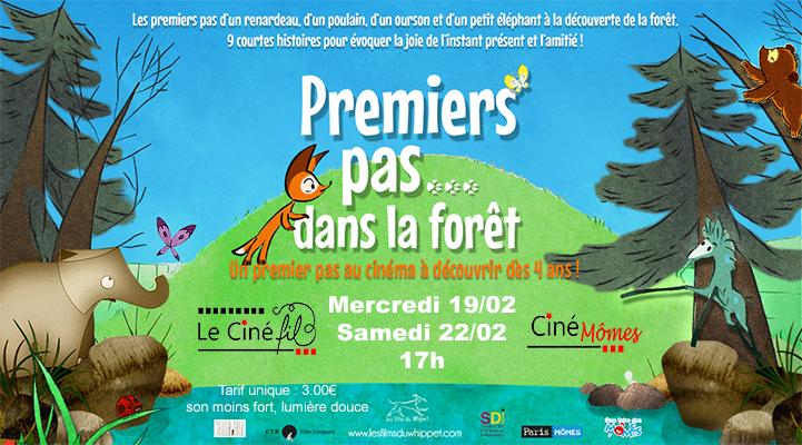 Photo du film Premiers pas dans la forêt