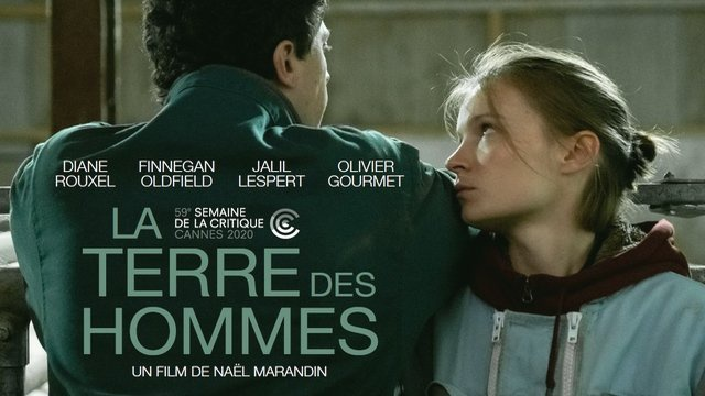 Photo du film La Terre des hommes